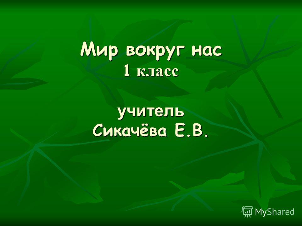 Мир вокруг нас 1 класс учитель Сикачёва Е.В.