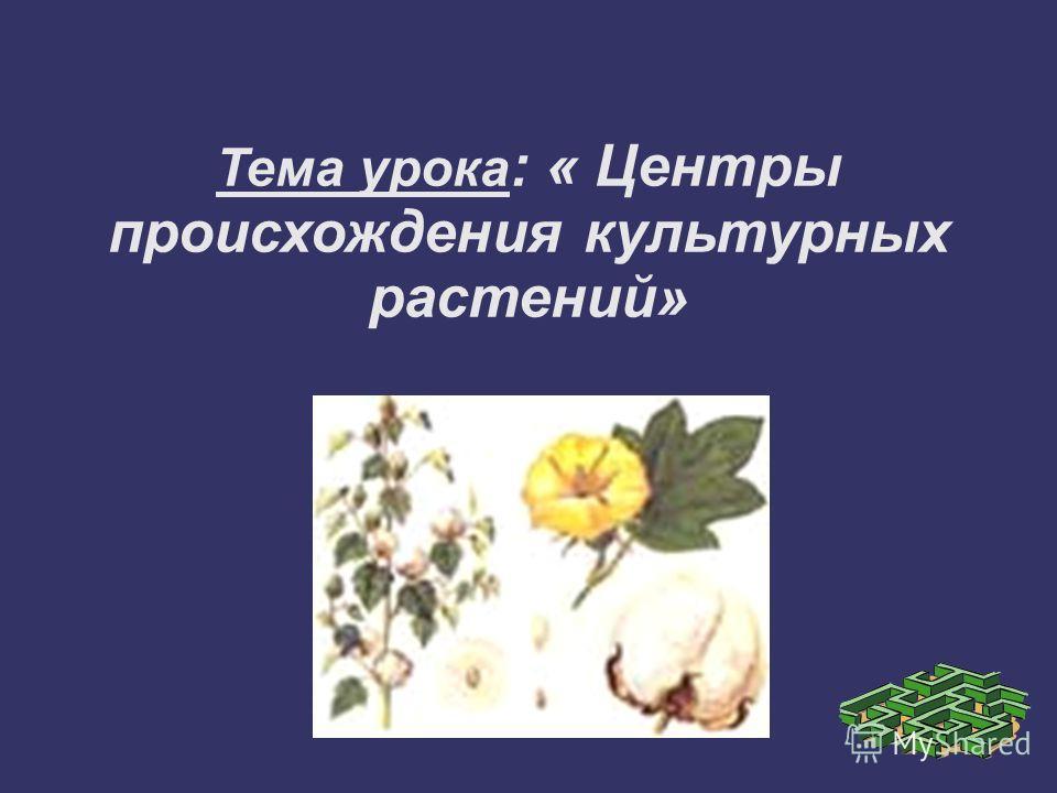 Тема урока : « Центры происхождения культурных растений»
