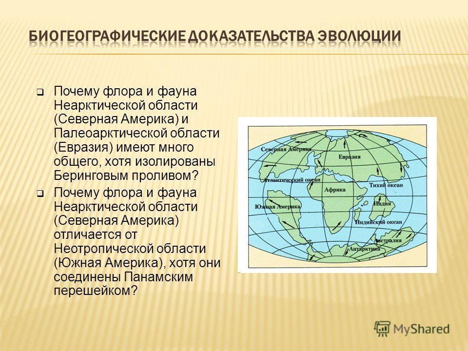 Почему флора и фауна Неарктической области (Северная Америка) и Палеоарктической области (Евразия) имеют много общего, хотя изолированы Беринговым проливом? Почему флора и фауна Неарктической области (Северная Америка) отличается от Неотропической об