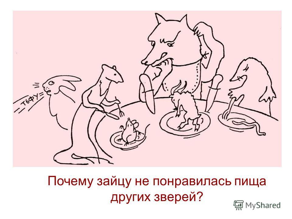 Почему зайцу не понравилась пища других зверей?