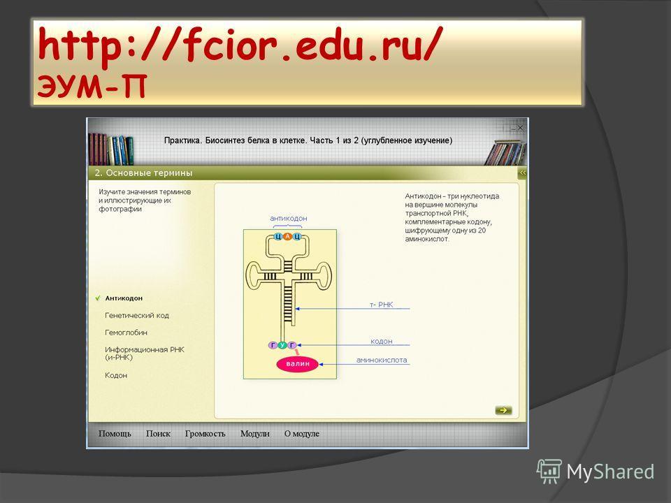 http://fcior.edu.ru/ ЭУМ-П