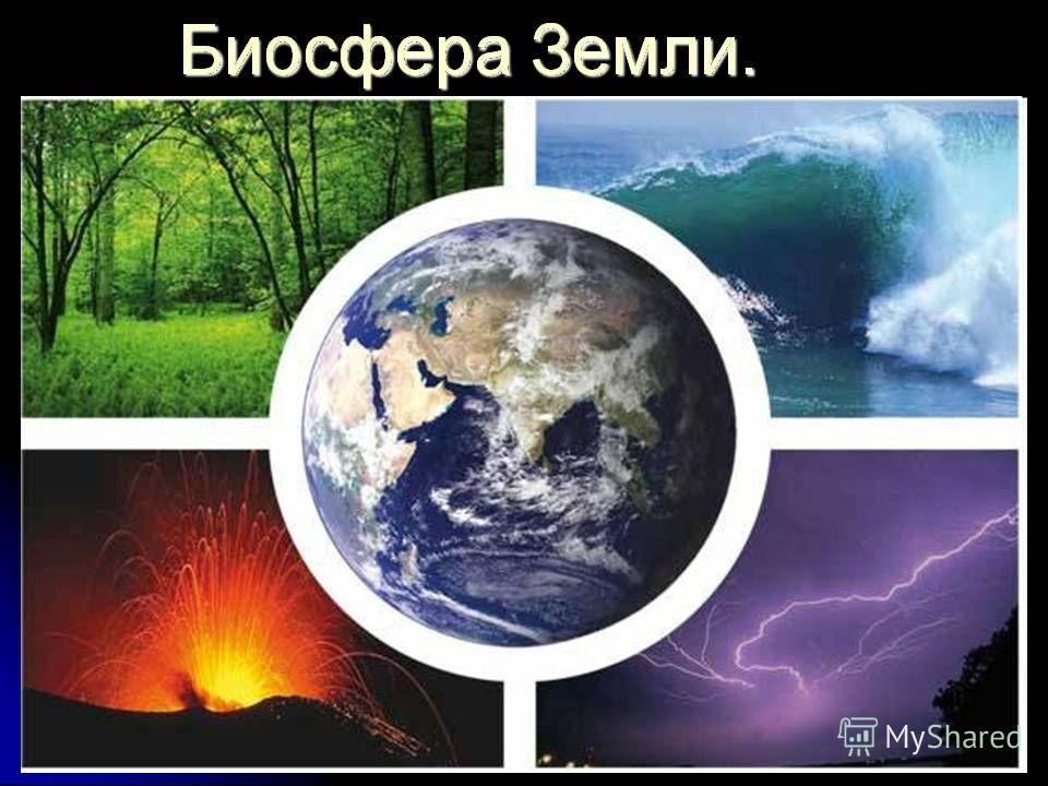«Биос» - жизнь «СФЕРА» – шар, оболочка Биосфера - оболочка Земли, заселенная живыми организмами