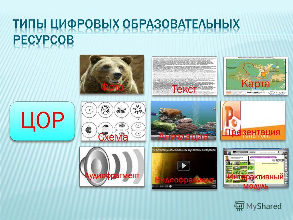 Интерактивный модуль Фото Текст Карта ЦОР Схема Анимация Презентация Аудиофрагмент Видеофрагмент