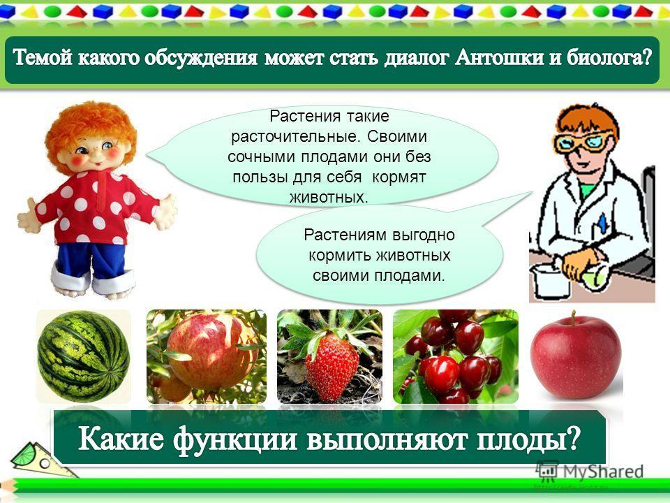 Растения такие расточительные. Своими сочными плодами они без пользы для себя кормят животных. Растениям выгодно кормить животных своими плодами.