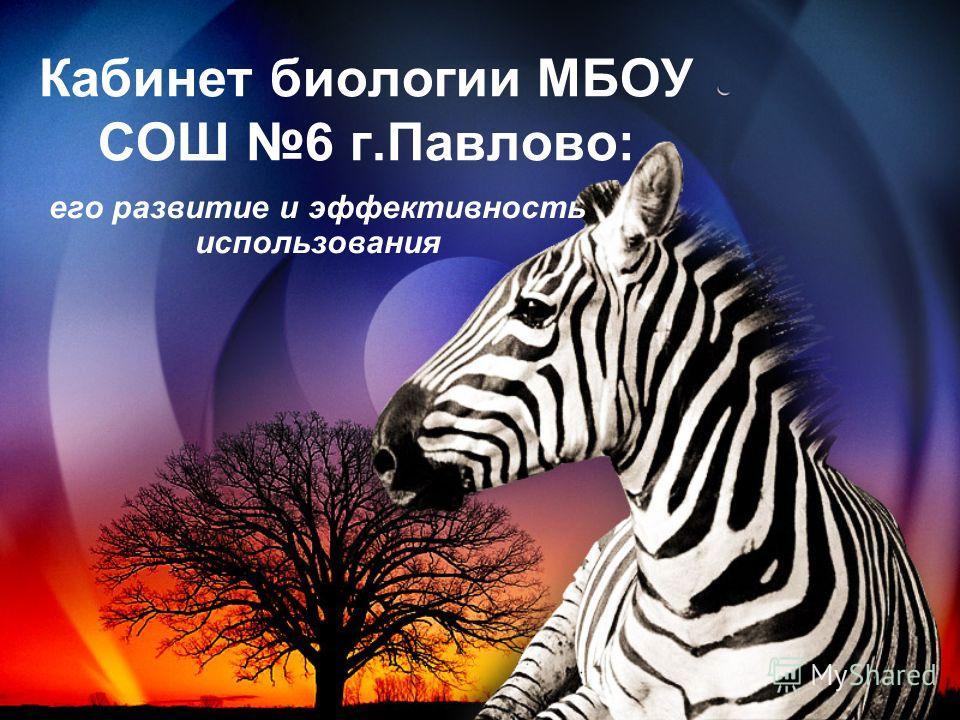 Кабинет биологии МБОУ СОШ 6 г.Павлово: его развитие и эффективность использования