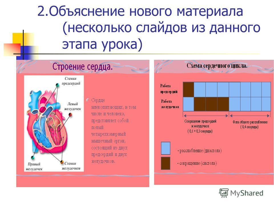 2. Объяснение нового материала (несколько слайдов из данного этапа урока)