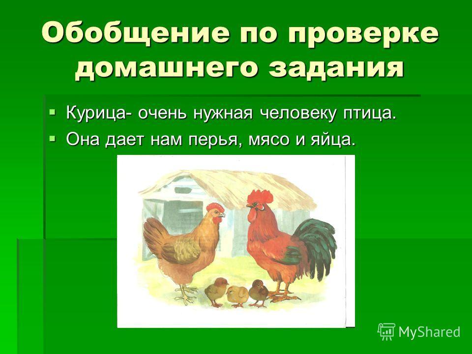Обобщение по проверке домашнего задания Курица- очень нужная человеку птица. Курица- очень нужная человеку птица. Она дает нам перья, мясо и яйца. Она дает нам перья, мясо и яйца.