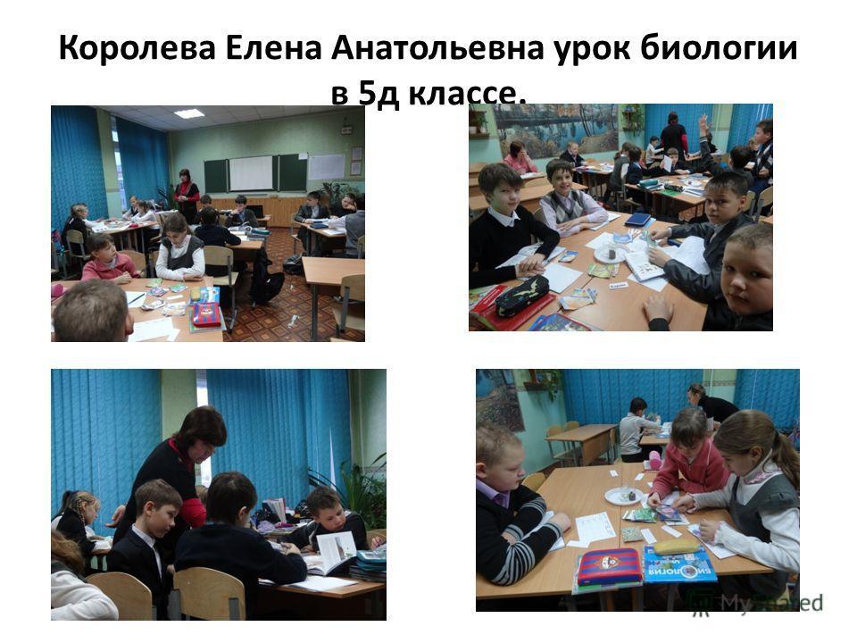 Королева Елена Анатольевна урок биологии в 5 д классе.
