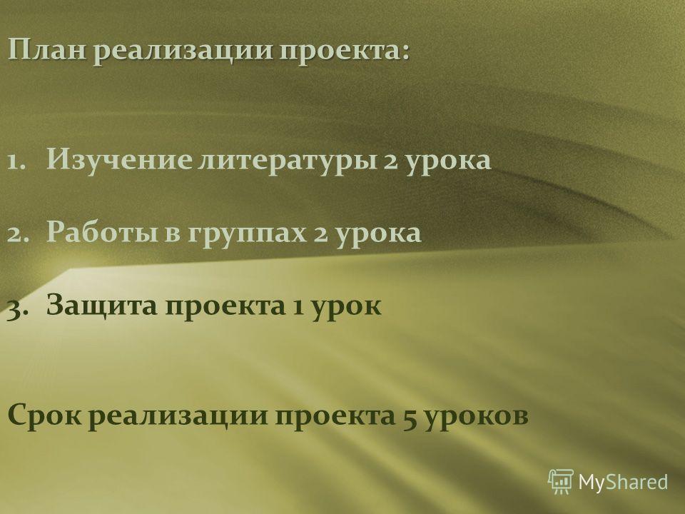 План реализации проекта: 1. Изучение литературы 2 урока 2. Работы в группах 2 урока 3. Защита проекта 1 урок Срок реализации проекта 5 уроков