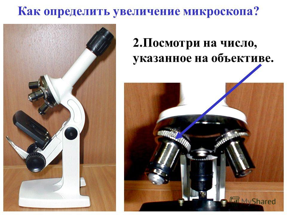 Как определить увеличение микроскопа? 2. Посмотри на число, указанное на объективе.