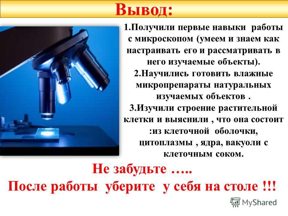 1. Получили первые навыки работы с микроскопом (умеем и знаем как настраивать его и рассматривать в него изучаемые объекты). 2. Научились готовить влажные микропрепараты натуральных изучаемых объектов. 3. Изучили строение растительной клетки и выясни