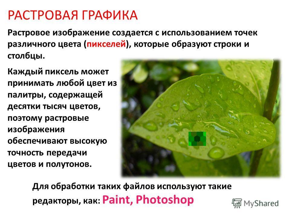 Для обработки таких файлов используют такие редакторы, как: Paint, Photoshop РАСТРОВАЯ ГРАФИКА Каждый пиксель может принимать любой цвет из палитры, содержащей десятки тысяч цветов, поэтому растровые изображения обеспечивают высокую точность передачи