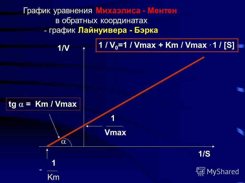Анализ уравнения Михаэлиса -Ментен 3. Km = [S], тогда V 0 = 1/2 Vmax Vmax [S] Km + [S] V 0 = 1. [S] > Km, тогда V 0 ~ Vmax 2 3 3