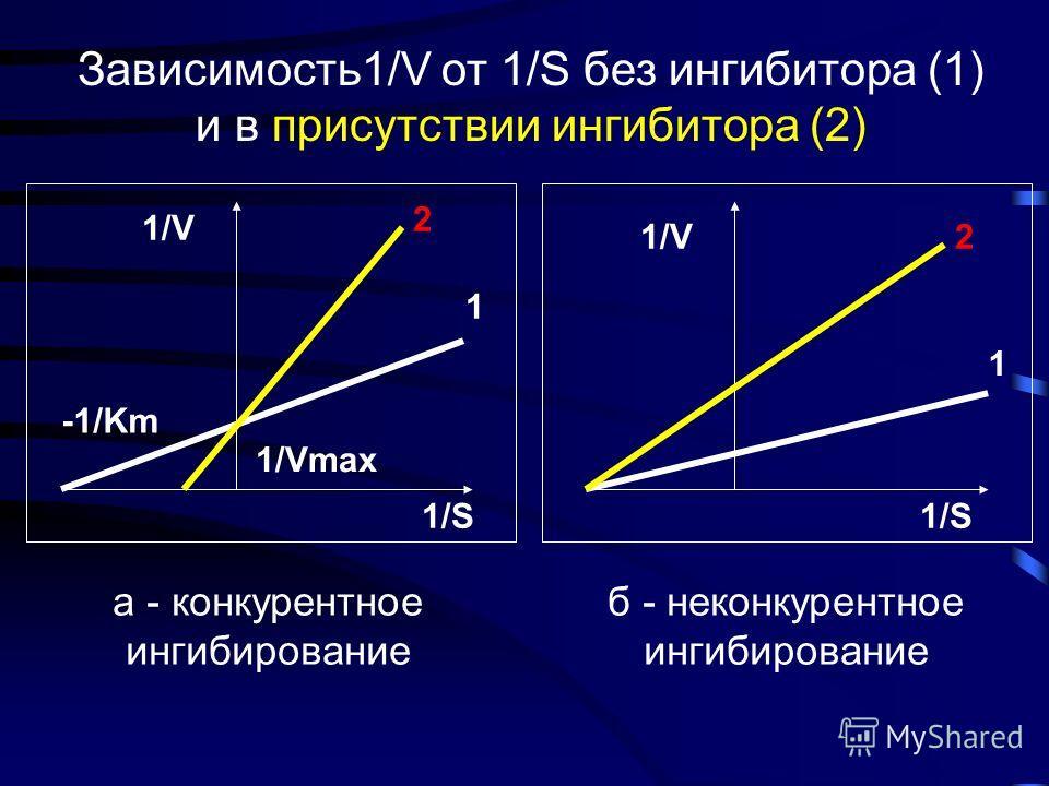 Неконкурентное ингибирование Неконкурентное ингибирование происходит в результате присоединения ингибитора к аллостерическому центру, что меняет третичную структуру фермента, снижая его родство к субстрату