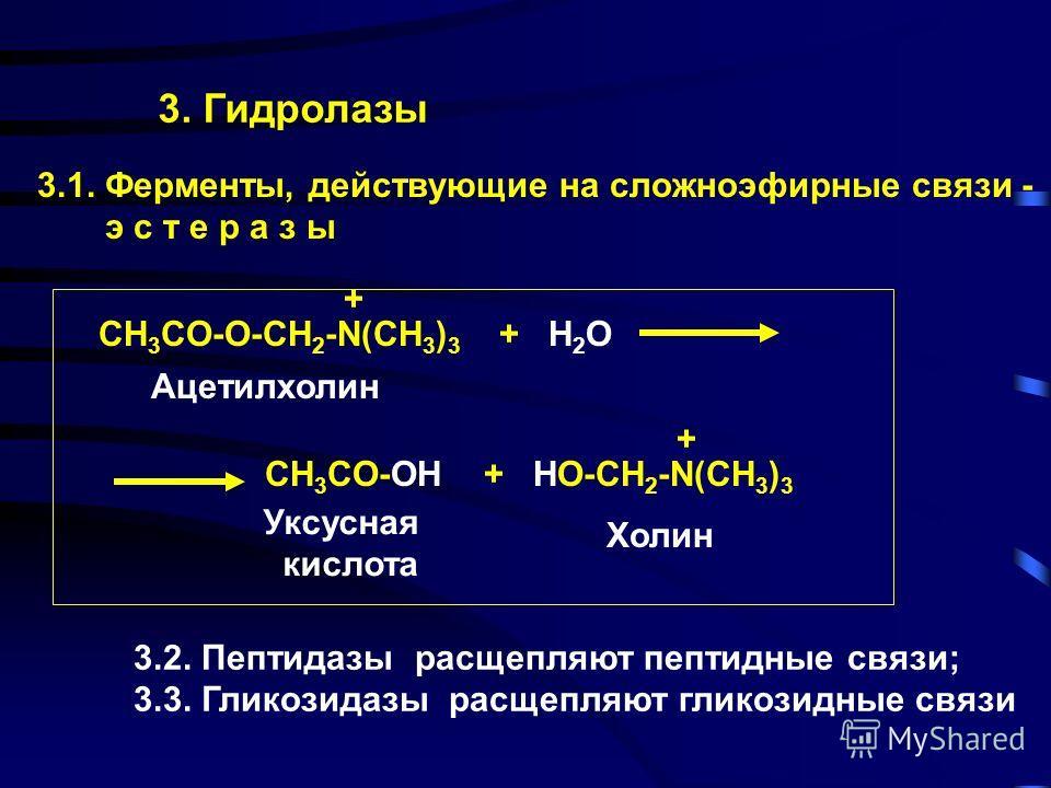 2. Трансферазы 2.1. Ацилтрансферазы СH 3 -CO-CoA + HO-CH 2 -СН 2 -N(CH 3 ) 3 CH 3 CO-O-CH 2 -СН 2 -N(CH 3 ) 3 + CoA Ацетил-кофермент-А + + Холин Ацетилхолин Кофермент-А 2.2. Фосфотрансферазы переносят фосфатные группы