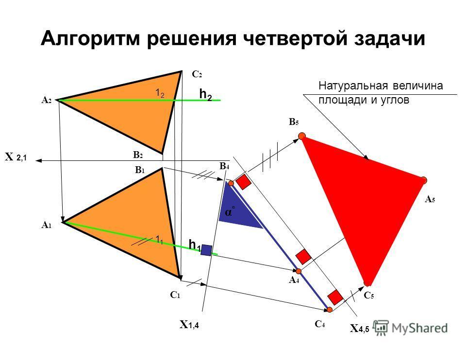 Алгоритм решения четвертой задачи Х 2,1 А2А2 X 1,4 А1А1 В1В1 А4А4 В4В4 С4С4 С1С1 С2С2 В2В2 h1h1 h2h2 1 1212 αºαº X 4,5 С5С5 А5А5 В5В5 Натуральная величина площади и углов