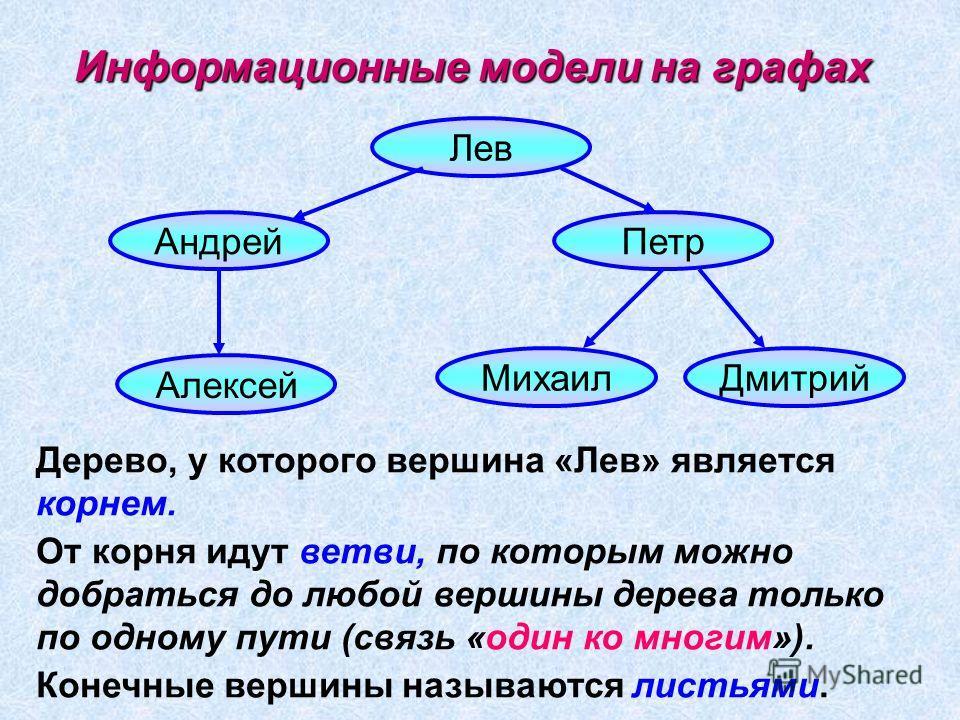 Информационные модели на графах Лев Петр Андрей Алексей Михаил Дмитрий Дерево, у которого вершина «Лев» является корнем. От корня идут ветви, по которым можно добраться до любой вершины дерева только по одному пути (связь «один ко многим»). Конечные