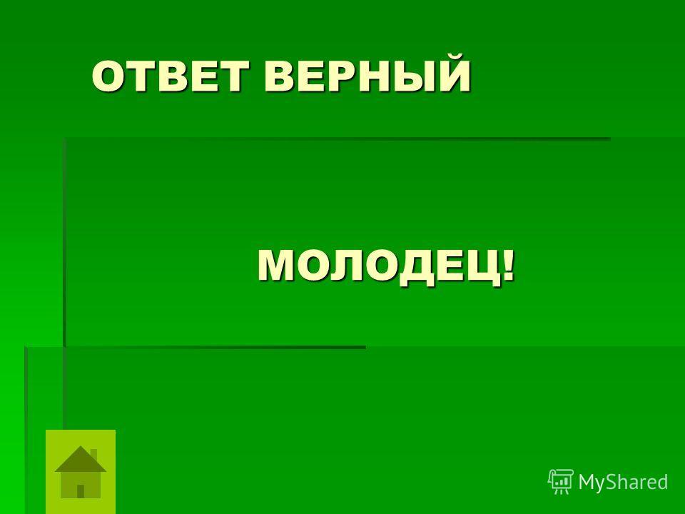 ОТВЕТ ВЕРНЫЙ МОЛОДЕЦ!