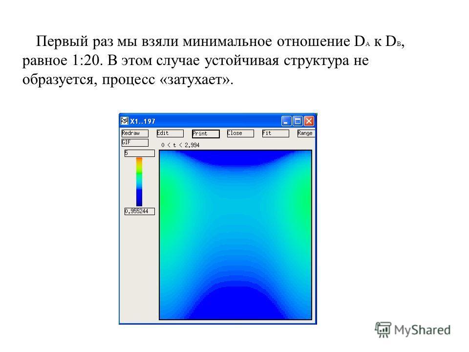 Первый раз мы взяли минимальное отношение D A к D B, равное 1:20. В этом случае устойчивая структура не образуется, процесс «затухает».