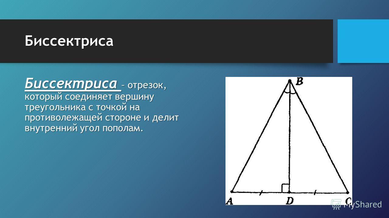 Биссектриса Биссектриса – отрезок, который соединяет вершину треугольника с точкой на противолежащей стороне и делит внутренний угол пополам.