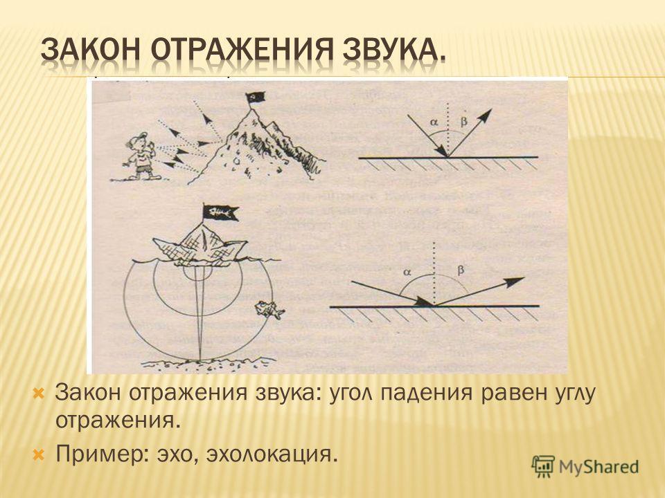 Закон отражения звука: угол падения равен углу отражения. Пример: эхо, эхолокация.