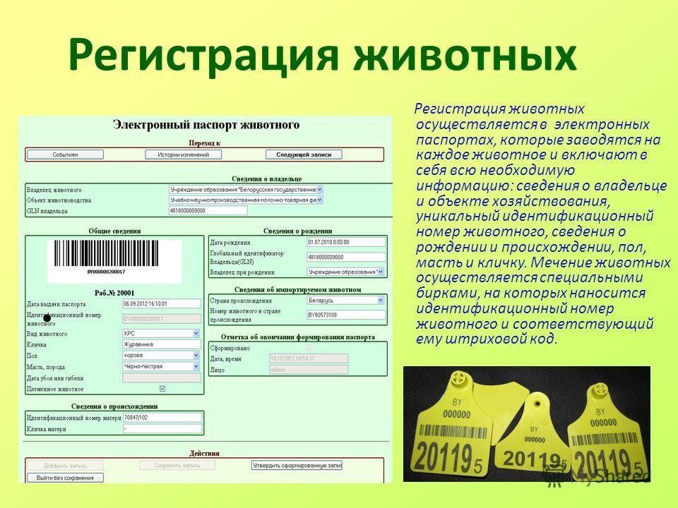 Регистрация животных Регистрация животных осуществляется в электронных паспортах, которые заводятся на каждое животное и включают в себя всю необходимую информацию: сведения о владельце и объекте хозяйствования, уникальный идентификационный номер жив