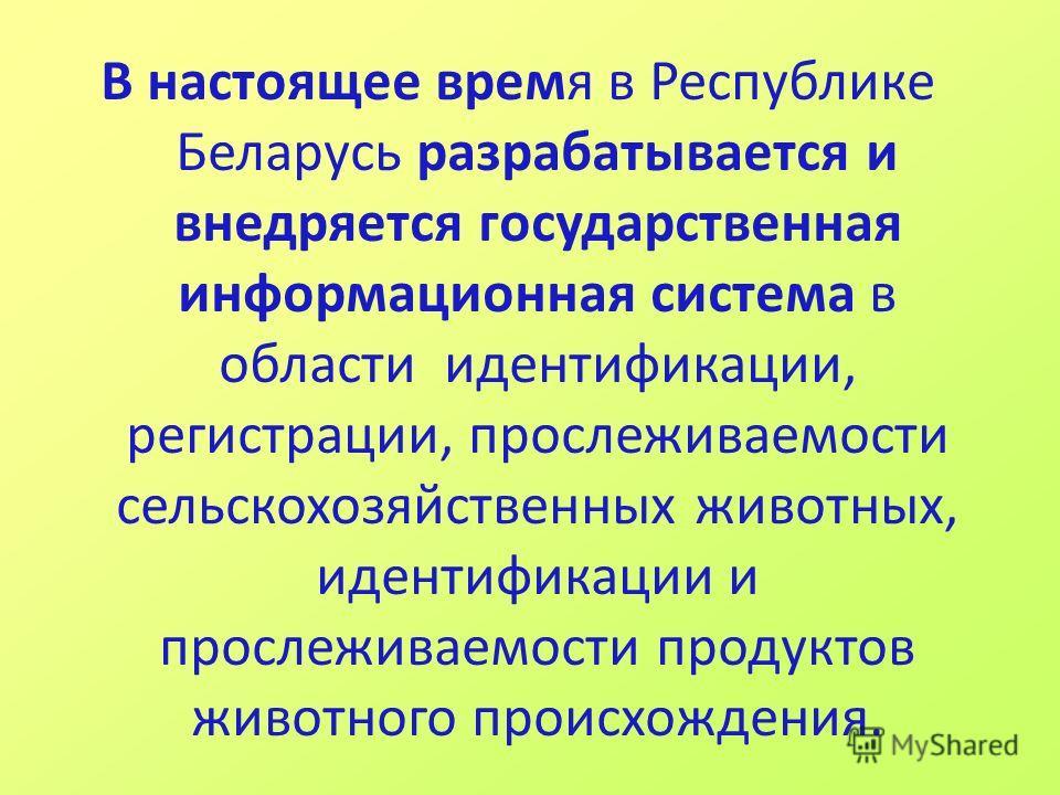 В настоящее время в Республике Беларусь разрабатывается и внедряется государственная информационная система в области идентификации, регистрации, прослеживаемости сельскохозяйственных животных, идентификации и прослеживаемости продуктов животного про