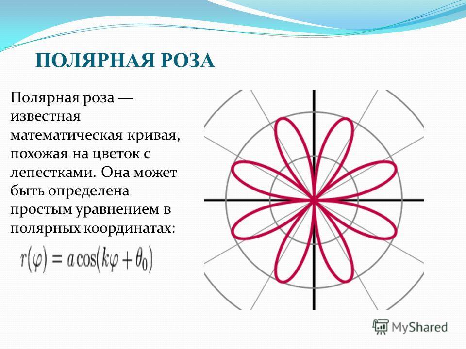 ПОЛЯРНАЯ РОЗА Полярная роза известная математическая кривая, похожая на цветок с лепестками. Она может быть определена простым уравнением в полярных координатах: