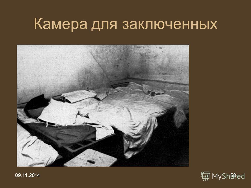 09.11.201458 Камера для заключенных