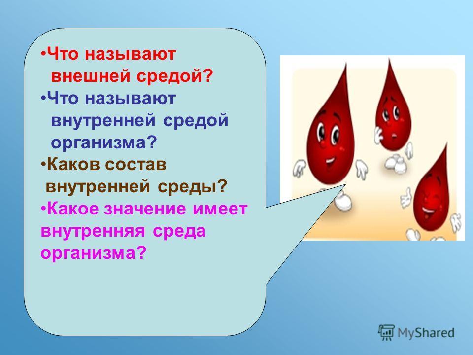Что называют внешней средой? Что называют внутренней средой организма? Каков состав внутренней среды? Какое значение имеет внутренняя среда организма?