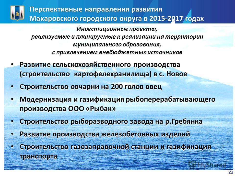 Перспективные направления развития Макаровского городского округа в 2015-2017 годах 22 Инвестиционные проекты, реализуемые и планируемые к реализации на территории муниципального образования, с привлечением внебюджетных источников