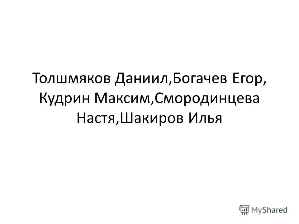 Толшмяков Даниил,Богачев Егор, Кудрин Максим,Смородинцева Настя,Шакиров Илья
