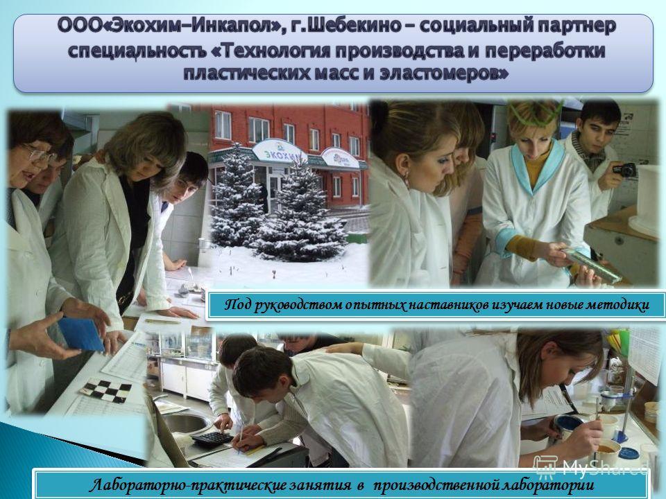 Лабораторно-практические занятия в производственной лаборатории Под руководством опытных наставников изучаем новые методики