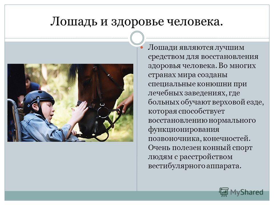 Лошадь и здоровье человека. Лошади являются лучшим средством для восстановления здоровья человека. Во многих странах мира созданы специальные конюшни при лечебных заведениях, где больных обучают верховой езде, которая способствует восстановлению норм