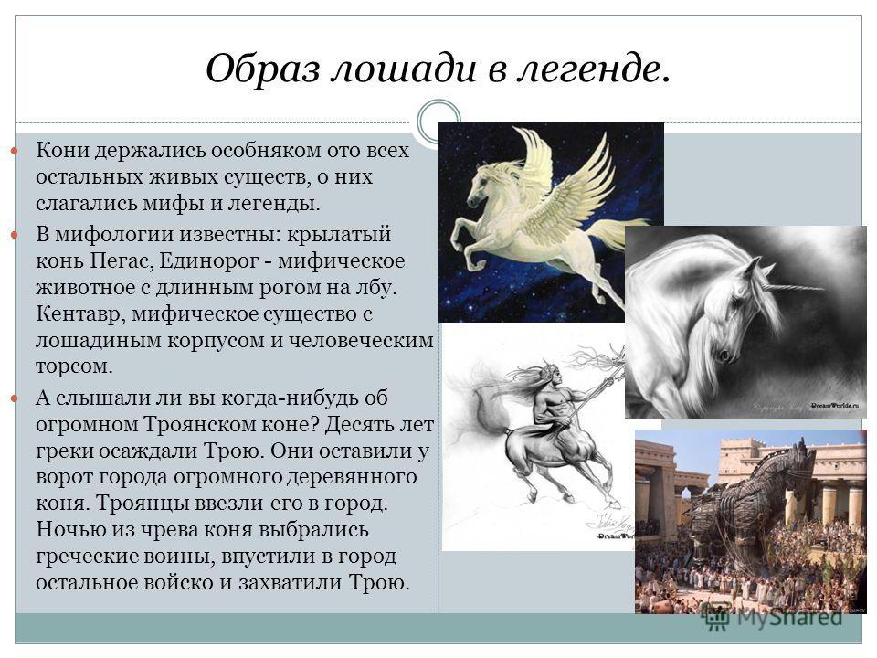 Образ лошади в легенде. Кони держались особняком ото всех остальных живых существ, о них слагались мифы и легенды. В мифологии известны: крылатый конь Пегас, Единорог - мифическое животное с длинным рогом на лбу. Кентавр, мифическое существо с лошади
