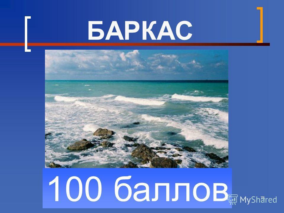 75 100 баллов БАРКАС