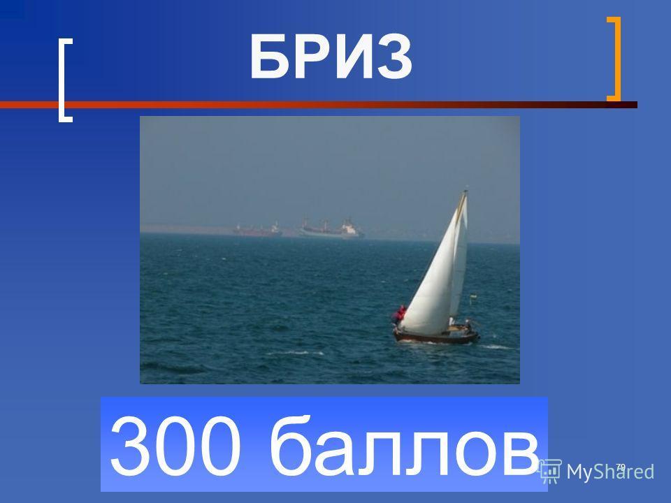 79 300 баллов БРИЗ