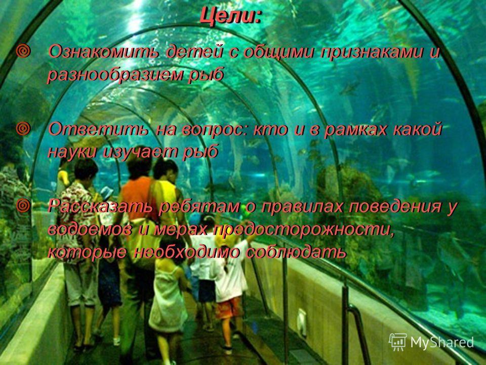 Цели:Цели: Ознакомить детей с общими признаками и разнообразием рыб Ответить на вопрос: кто и в рамках какой науки изучает рыб Рассказать ребятам о правилах поведения у водоемов и мерах предосторожности, которые необходимо соблюдать Ознакомить детей