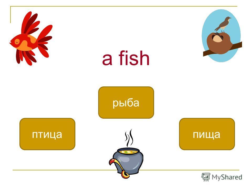 a fish рыба птицапища