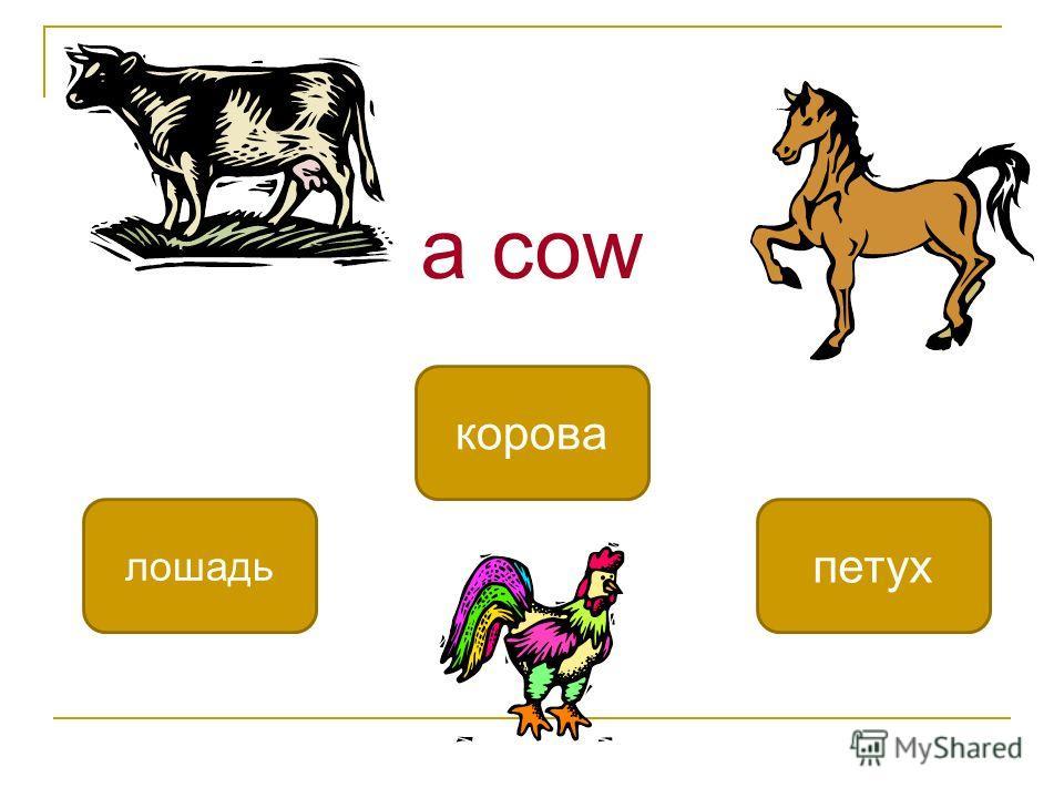 a cow корова лошадь петух