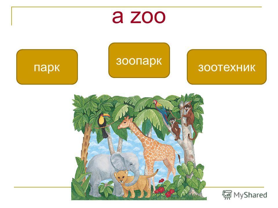 a zoo зоопарк паркзоотехник