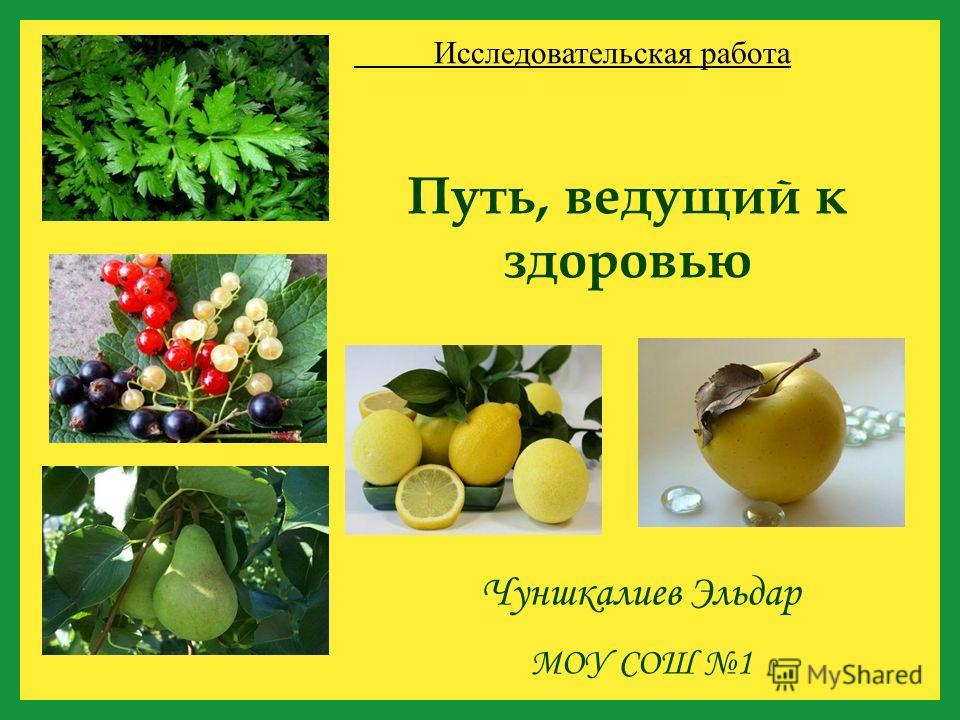Путь, ведущий к здоровью Чуншкалиев Эльдар МОУ СОШ 1 Исследовательская работа