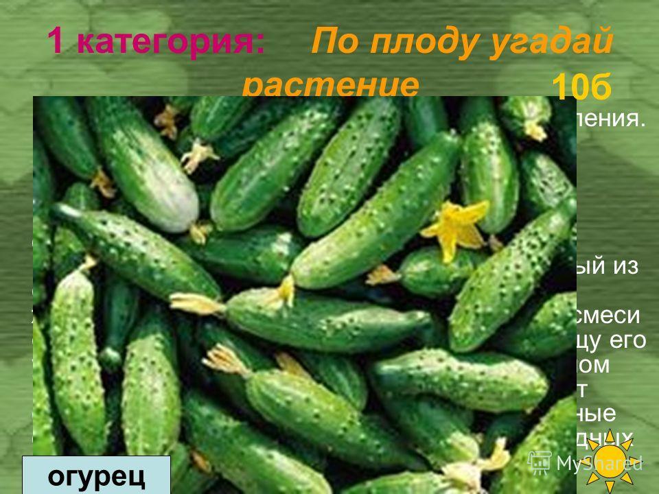 20 б 10 б 30 б 20 б 10 б 30 б 20 б 10 б 1 категория По плоду угадай растение 2 категория Пришельцы – постояльцы. 3 категория Пряные ароматы.