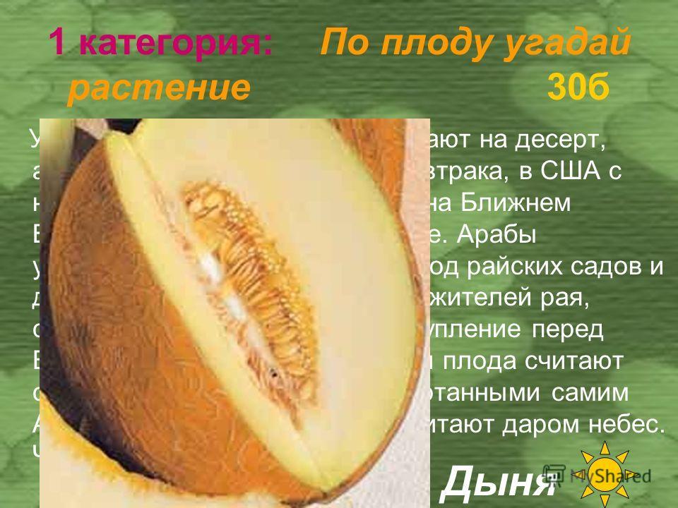 1 категория: По плоду угадай растение 20 б Большая ягода округлой, грушевидной или цилиндрической формы; поверхность плода матовая или глянцевая. Достигает в длину 70 см, в диаметре 20 см; весит 0,41 кг. Окраска спелых плодов от серо-зелёной до буров