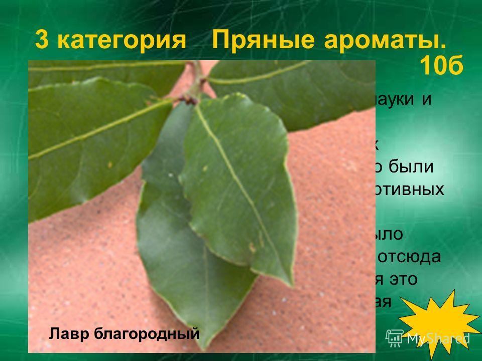 2 категория пришельцы - постояльцы. Родина этого растения – пустыня Калахари, где и сейчас оно встречается в диком виде. Прославилось оно тем, что в пустыне поило своим соком всех жаждущих. В Россию это растение было привезено как заморское лакомство