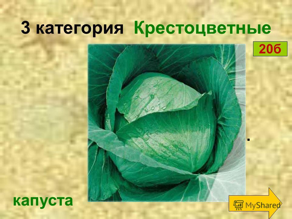 3 категория Крестоцветные репка Кругла, а не луна, Желта, а не масло, С хвостиком, а не мышь. 10 б