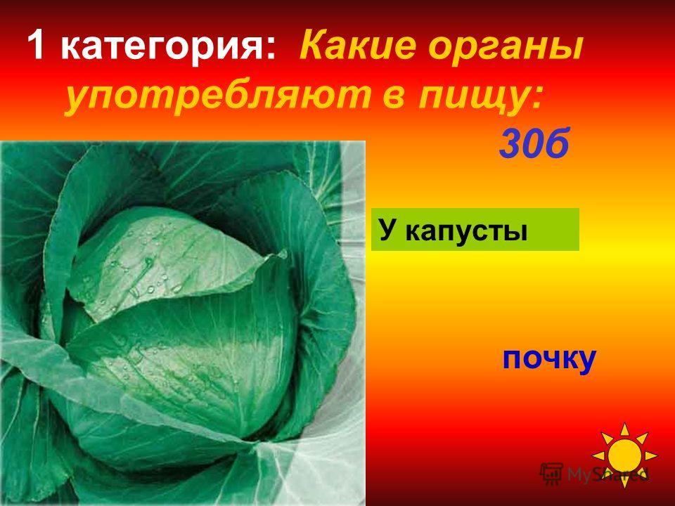 1 категория: Какие органы употребляют в пищу: 20 б семена У гороха