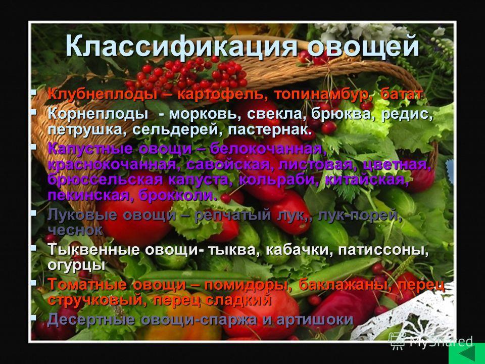 Классификация овощей Клубнеплоды – картофель, топинамбур, батат Клубнеплоды – картофель, топинамбур, батат Корнеплоды - морковь, свекла, брюква, редис, петрушка, сельдерей, пастернак. Корнеплоды - морковь, свекла, брюква, редис, петрушка, сельдерей,