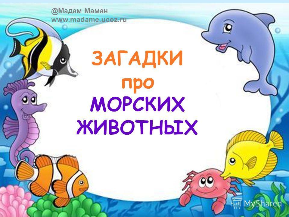 ЗАГАДКИ про МОРСКИХ ЖИВОТНЫХ @Мадам Маман www.madame.ucoz.ru