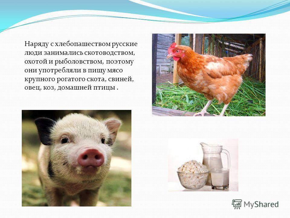 Наряду с хлебопашеством русские люди занимались скотоводством, охотой и рыболовством, поэтому они употребляли в пищу мясо крупного рогатого скота, свиней, овец, коз, домашней птицы.